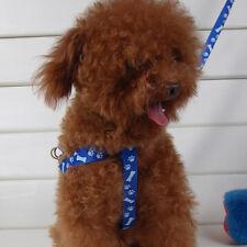 Correa De Mascota Arnés + Correa(Largo120cmancho1cm) Para Los Perros Pequeños