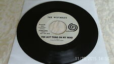 "The Vejtables LAST THING ON MY MIND 7"" promo garage psych freakbeat"
