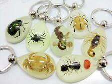 14 PCS Newest Novelty Mixed Fashion Insect Glow Shape Resin Keychain