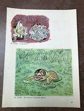 More details for original 1944 ww2 double sided print ! w.trier - the common toad ( laval )
