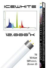 LAMPADA NEON T8 ACQUARIO DOLCE MARINO HAQUOSS ICEWHITE 18Watt/589mm