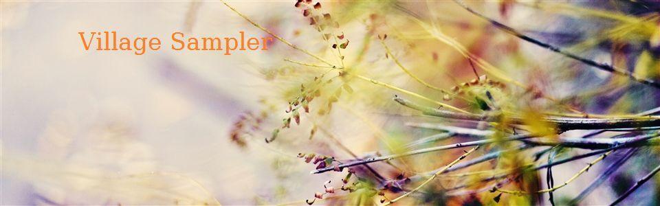village_sampler2