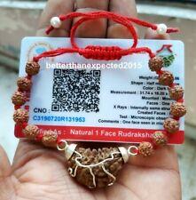 Rudraksha 1 One Mukhi Ek Facet Rudraksh Hindu Prayer Bracelet AA++ Lab Certified