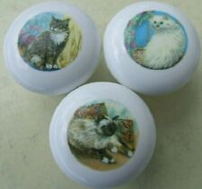 Cabinet Knobs Knob w/ Birman Himilayan Tabby White Cat