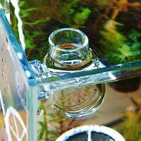 Crystal Glass Pot Plant Cup Holder Red Shrimp Aquarium Fish Tank Aquatic New