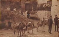 CLOVELLY DEVON UK RIDING DONKEYS AT THE FOOT OF CLOVELLY~JUDGES PHOTO POSTCARD