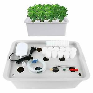 11 Holes Plant Site Hydroponic System Grow Kit Indoor Cabinet Box Home Garden
