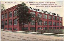 Crosby Frisian Fur Company in Rochester NY Postcard 1912