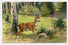 Chasse. Chevreuil  Hunting . Deer . Hirsch . Jagd. GAUFRé . EMBOSSED
