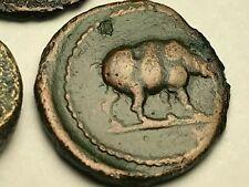 New ListingAncient Auth. 3 Xrare$ Coins; 1 Greek 300 Bc. & 2 Roman, Rhino & Quadriga 81- Ad