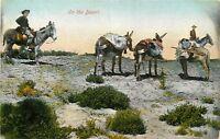 OLD DB Postcard CA F003 On the Desert Cowboy Prospector Miner Donkeys Newman