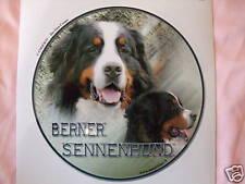 1 autocollant - motif chien  BOUVIER BERNOIS