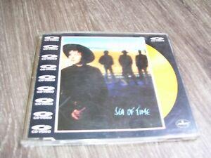 Rainbirds - Sea Of Time * VIDEO CD MAXI PAL 4 TRACK UK 1989 VCD *