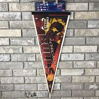 Vintage 90s Chicago Bulls Wincraft Sports NBA Basketball Pennant Flag Display OG