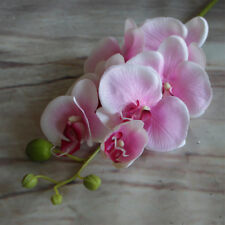 Artificial Butterfly Orchid Silk Flower Phalaenopsis Wedding Party Home Decor