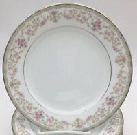 Noritake Edgewood 2 Salad Plates Pink Roses Lace Edge Blue Silver Band