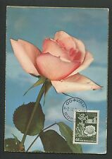 BULGARIA MK 1956 FLORA ROSEN ROSE ROSES MAXIMUMKARTE CARTE MAXIMUM CARD MC d6072
