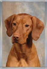 Hungarian Vizsla A6 Blank Card No 6 By Starprint