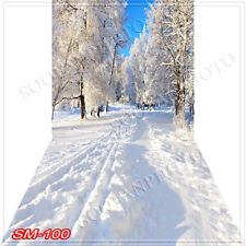 Christmas10'x20'Computer/Digital Vinyl Scenic Photo Backdrop Background SM100B88