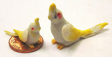 1:12 Scale Large & Small Grey Cockatoo's Dolls House Miniature Garden Bird C3