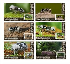 2020 PANDA ANT 6 SOUVENIR SHEETS UNPERFORATED  INSECTS