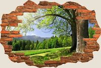 3D Hole in Wall Beautiful Green Meadow View Wall Stickers Film Decal Mural S44