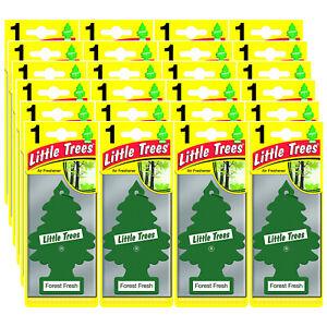 Little Trees Car Air Freshener FOREST FRESH Scent Home Office Odor Eliminator