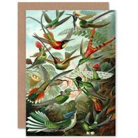 Nature Biology Bird Humming Ernst Haeckel Germany Blank Greeting Card