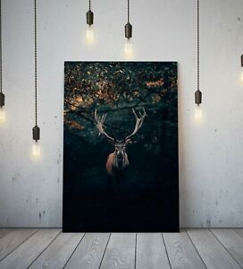STAG 4- DEEP FRAMED CANVAS WALL ART PICTURE PRINT- ANIMAL BLACK BROWN GREEN