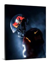 Tom Brady Tampa Bay Buccaneers Canvas 16x20 Football Quarterback Goat Florida