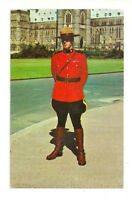 ROYAL CANADIAN MOUNTED POLICE MOUNTIE CANADA CHROME POSTCARD