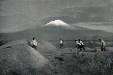 ANATOLIE c. 1940 - Moisson Mont Ararat Turquie - P25