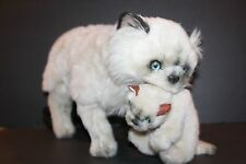"Applause Himalayan Cat Kitten Jockline Italy Plush 1983 Blue Eyes 18"" Realistic"