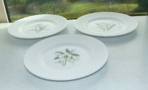 Spode Fine China F1773T 3 x Plates 23cm Snowdrop Narcissus Christmas Rose