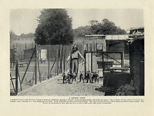 LAKELAND TERRIER KENNELS WITH DOGS AND OWNER OLD ORIGINAL DOG PRINT FROM 1934