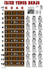Irish Tenor Banjo 4 String Fingerboard Poster Wall Chart Notes