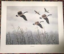 "David Turnbaugh Canadian Goose Print ""January "" By Turnbaugh S/N In Pencil"