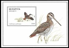 "BELARUS 176 - European Birds ""Common Snipe"" S/S (pa90261)"