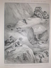 Fur for Europe killing Chinchillas in Andes 1902 prints