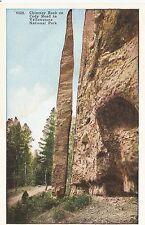 Yellowstone National Park Chimney Rock on Cody Road Tammen Postcard c1915