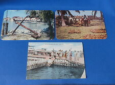 3 Postcards - Key West FL - Sponge Auction, Turtle Crawls, Thompson's Dock