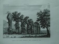 1845 Zuccagni-Orlandini Avanzi di un Antico Acquedotto nelle vicinanze di Pisa