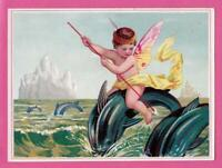 Victorian Stock Trade Card Fairy Rides Dolphin in Pod Icebergs Behind 4.75 x 3.5