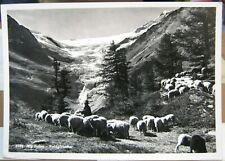Switzerland Alp Grum Palugletscher REPRO - posted