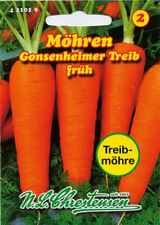 carote, gonsenheimer Treib, SEMI,Daucus carota, verdure, chrestensen, NLC 2