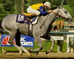 LADY'S SECRET 8X10 PHOTO HORSE RACING PICTURE JOCKEY