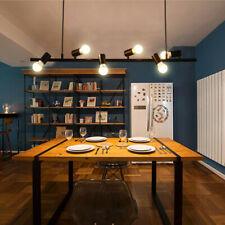 Bar Pendant Light Kitchen Lamp Bedroom Ceiling Lights Large Chandelier Lighting