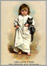 Beautiful Child & Gray Cat Victorian Trade Cards Poster Art Print Advertisement