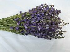 NATURAL AIR DRIED LILAC LARKSPUR FLOWERS FLORAL FOLIAGE FLOWER