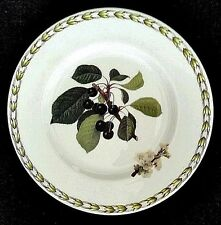 Queen's Fine Bone China Royal Horticultural Society Fruit Plate Red Apple